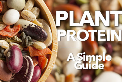 A Simple Guide To Plant Protein