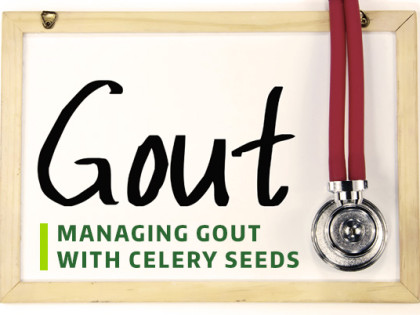 Managing Gout with Celery Seeds