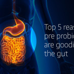 Gut Microbiome, Top 5 Reasons Pre & Probiotics are Goodies for the Gut!