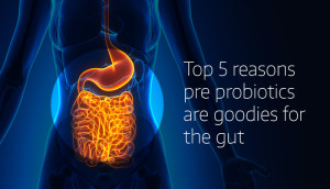 Top 5 reasons prebiotics are goodies for the gut