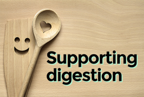 support_digestion