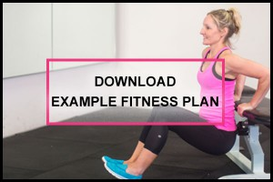 nutrislim-download-fitness-plan-example